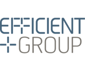 Efficient Group Limited