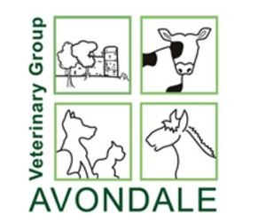 Avondale Veterinary Group